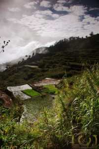 Morning Mist at the Rice Terraces
