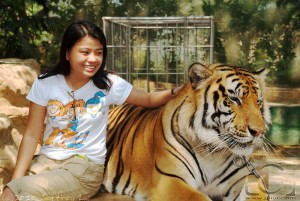 Tiger and Joie