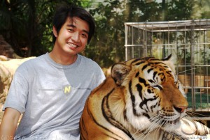 Tiger and Rhoy